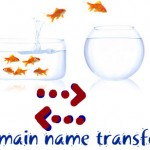 Transfer Your Domain to Another Registrar