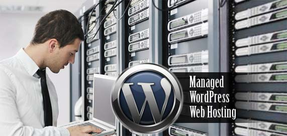 wordpress-professional-management-web-server