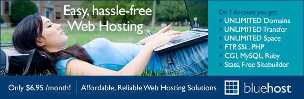 bluehost-for-professional-business-websites